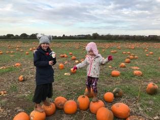 nay nays adventures - October activities